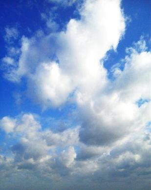 中野 市 天気 中野市 ピンポイント天気、気温、週間天気|@nifty天気予報